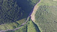 Wildlife of Ukraine. aerial footage Stock Footage