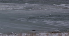 Scenic - Pan of waves in grease ice along snowy arctic shore Stock Footage