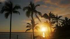 romantic sunset between sea and palms in La Palma Stock Footage