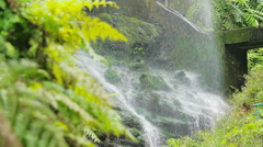 Los Tilos( La Palma)- the beauty of nature water gushing from the rocks Stock Footage