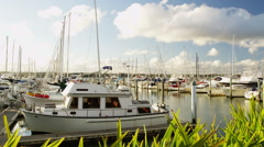 View of Bayswater Marina Stock Footage
