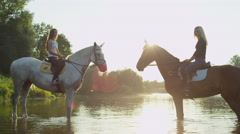 CLOSE UP: Two strong horses with riders standing in river, facing each other Stock Footage