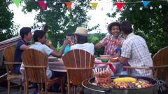 People having drinks during a barbecue talking and toasting wine glasses Stock Footage