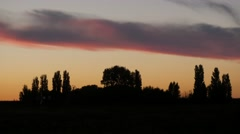 Trees in polder at sunset,Noord Holland,Netherlands Stock Footage