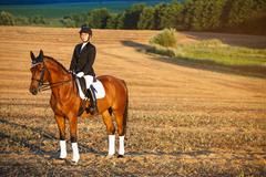 Beautiful elegance woman cowgirl, riding a horse. Has slim sport body. People Stock Photos
