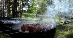 Meat, Vegetables and Chicken Barbecue, Grilled on Charcoal Stock Footage