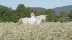 SLOW MOTION: Smiling girl in white dress riding white horse in blooming field Stock Footage