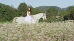 SLOW MOTION: Cheerful girl in white dress riding white horse in blooming field Stock Footage