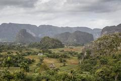 Mogotes in the Vinales Valley, UNESCO World Heritage Site, Pinar del Rio, Cuba, Stock Photos