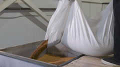 At the factory for sorting and packaging of cereals and grains. Worker pours Stock Footage