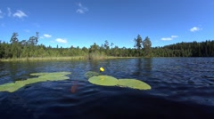 Sweden in summer - landscapes, forest, lakes  Stock Footage