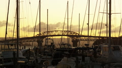 Yachts and Harbour Bridge Stock Footage