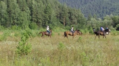 Riders practice dressage horse in the field. Long shot. Stock Footage