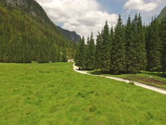 Aerial - Beautiful view of Radovna Valley Stock Footage