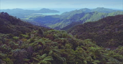 Aerial over native forest and hills in the Coromandel Peninsula, New Zealand Stock Footage