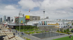 View of the Auckland Waterfront Stock Footage