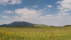Kendrick Peak As Seen Across Prairie In Kendrick Park- Flagstaff AZ Stock Footage