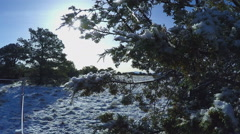 A Snowy Winter Morning In North Central Arizona- Valle AZ Stock Footage