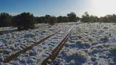 Tire Tracks Through Snow On Dirt Road Through Woods- Valle AZ Stock Footage