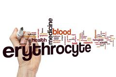 Erythrocyte word cloud Stock Illustration