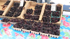 Famers Market Berries Stock Footage