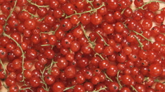 Redcurrant berries on a branch are rotating Stock Footage