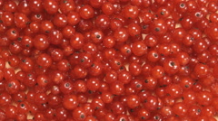 TOP VIEW: Redcurrant berries are rotating Stock Footage