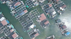 Overhead drone shot of local fishing community in floating village China Stock Footage