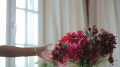 Beautiful flowers in vase Stock Footage