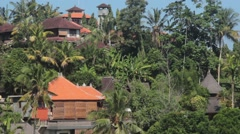 House in Ubud Among Palm Trees Stock Footage
