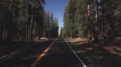 Yosemite Highway Forest Road Driving POV Timelapse HD Stock Footage