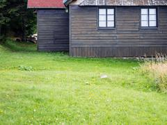 Rustic mountain cottage wooden front with grass Stock Photos
