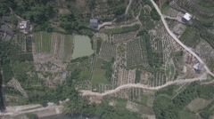 Flying over rural fields cultivating a diverse range of crops in China Stock Footage