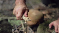Male Camper Crumbles a Stick for Kindling Stock Footage