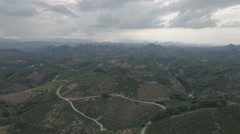 Flying over orange fruit orchards set in a mountainous region in China Stock Footage