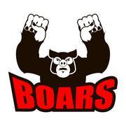 Boars logo for sports team. Angry pig. Aggressive wild boar. grumpy farm anim Stock Illustration