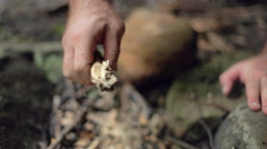 Male Camper Crumbles a Stick into Firepit Stock Footage