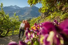 Mature couple hiking along country road, looking at view, Meran, South Tyrol, Stock Photos