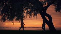 Man And Woman Meeting under a big Tree, Hugging each other and Looking at Sunset Stock Footage