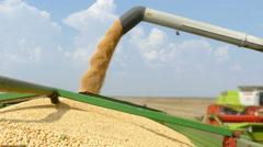 Combine harvester unloading soybean Stock Footage