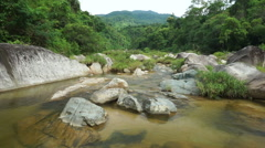 View of a lake into the tropical jungle at summer day. Mountain stream is Stock Footage