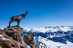 Mountain goat statue on ridge in snow covered mountains, Sankt Moritz, Engadin, Kuvituskuvat