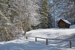 Log cabin by trees on snow covered landscape, Elmau, Bavaria, Germany Stock Photos