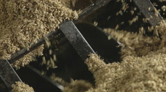 Transportation of wheat at the brewery Stock Footage