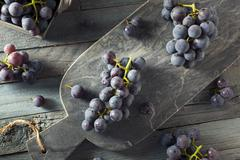 Raw Organic Purple Concord Grapes Stock Photos