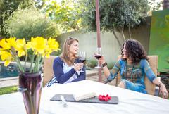 Two mature female friends making a red wine toast at garden table Stock Photos