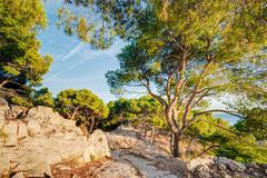 Nature Of Calanques On The Azure Coast Of France. Calanques Stock Photos