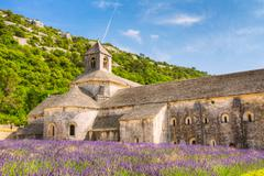Beautiful Landscape Lavender Field And An Ancient Monastery Abbey Abbaye Notre Stock Photos