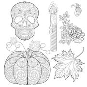 Zentangle stylized  Skull, candle, rose, oak acorn, pumpkin, aut Stock Illustration
