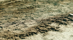 Cracked desert soil close up Stock Footage